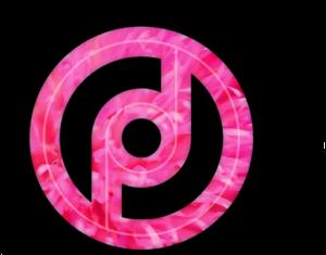Persona Design Logo